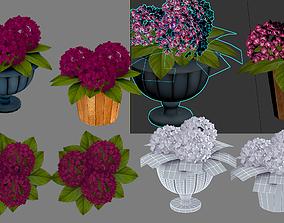 3D model flowers in a flowerpot