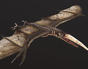 Pteranodon 3D model game-ready