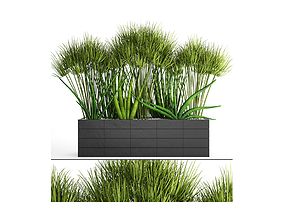 tree Flowerbed with plants 3d model