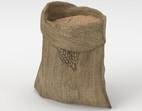 Food Sack Grain Open 3D Model