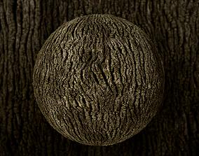 3D asset Oak-bark PBR Texture