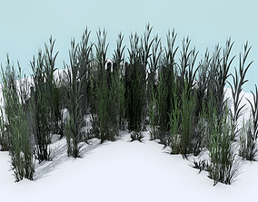 Tall Grass Pack 3D asset