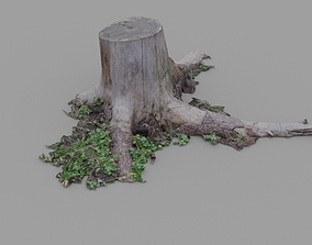 Realistic scanned gameready Pine stump 3D asset