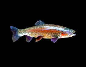 3d model of trout