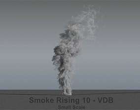 rising Smoke Rising 10 - VDB 3D