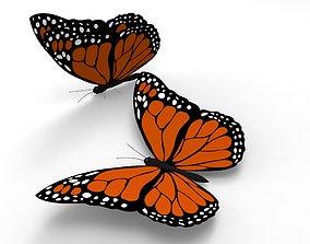 Monarch Butterfly 3D