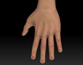 Arm and Hands Game-Ready with 4K maps 3D asset
