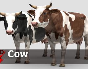 3D asset COW realistic
