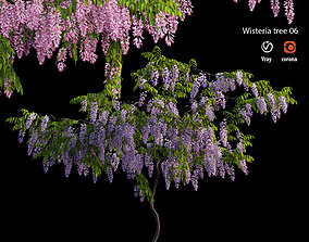 3D Wisterial tree 06