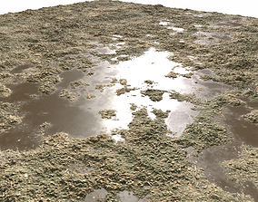 Dirty Ground 2 PBR 3D model