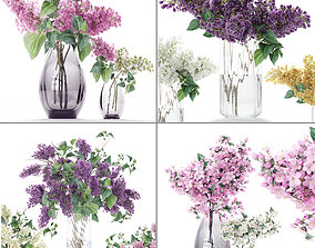3D model Flower collection