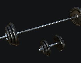 3D model Gym Dumbbell Set PBR