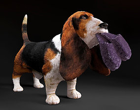 Basset Hound 3D model animals