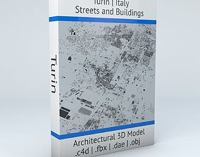 Turin Streets and Buildings 3D realistic