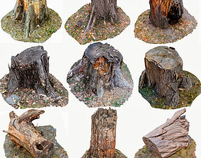 low-poly 3D Scan BPR Tree Stump Collection model