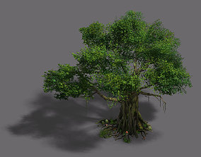 3D model bamboo Plant - banyan tree