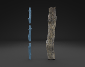 3D Scanned Piece Of Wood Log HIGH POLY