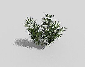 low poly weed plant 3D model
