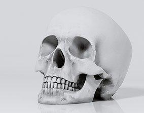 3D print model HUMAN SKULL games-toys