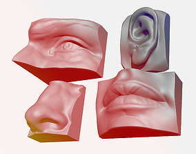 ANATOMY PACK - FACE PARTS 3D print model