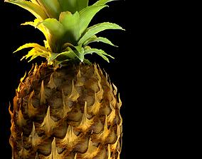 Pineapple Detailed Model