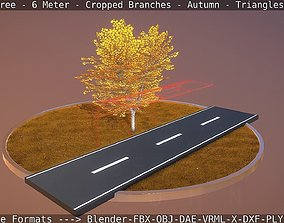 Tilia Tree - 6 Meter - cropped branches - Autumn 3D asset