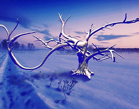 garden Winter Tree 3D model