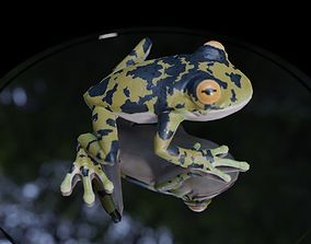 3D Frog animated
