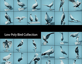 Low Poly bird Collection 3D model