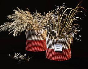 3D model Field plants set