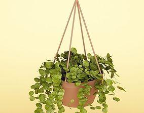 Plant 3D model foliage