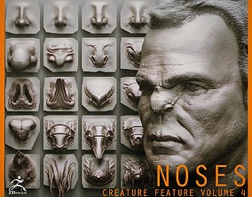 NOSES - 40 ZBrush VDM Nasal Areas 3D model
