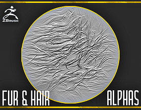 3D model Fur and Hair Alphas for ZBrush