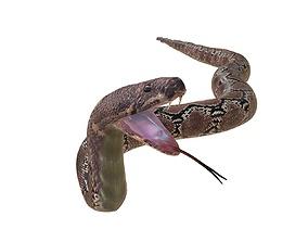 Python Snake Rigged 3D asset