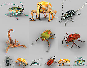 Insect Collection Vol 2 3D asset