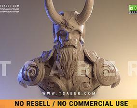 art Viking bust - 3D print character