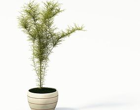 Simple Pot Plant 3D model