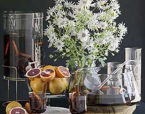Decorative set with grapefruit 3D