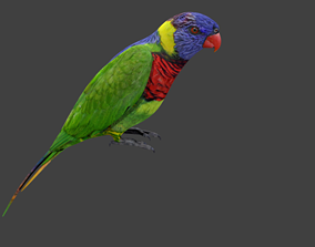 lowpoly bird 3D asset low-poly