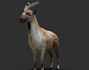 Mountains Goat 3D