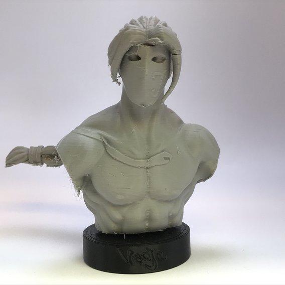 Vega Bust 3D Print