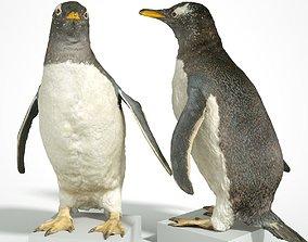 Penguin Scanned 3D VR / AR ready