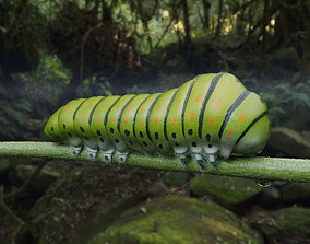Caterpillar animals 3D model