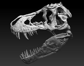 T Rex Skull 3D model creature