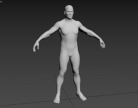 Male topology 3D model