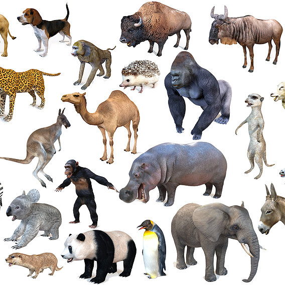 25 Ultimate Animals Collection Rigged