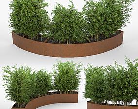 3D model bush Jardiniere Trendy 1500
