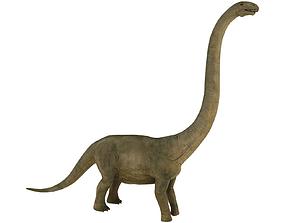 brontosaurus 3D asset