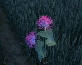 3D model Albizia flower