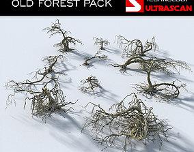 3D model OLD FOREST PACK 10